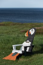 Die Puffin Site in Elliston
