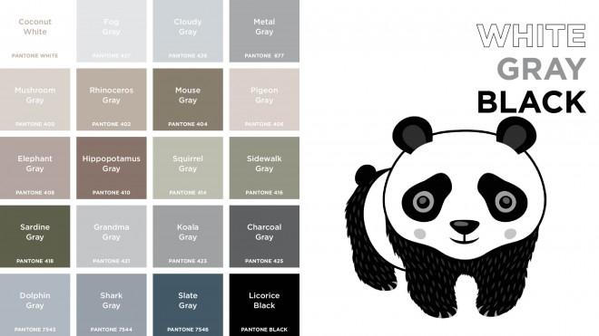 Pantone Colors white gray black