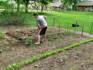 chores teach delayed gratification