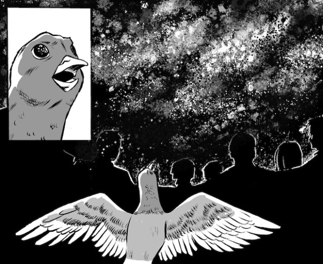 Stars Below  Image: Monkeybrain Comics