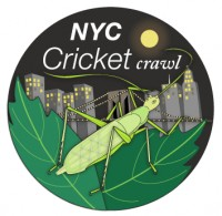 NYC cricket crawl