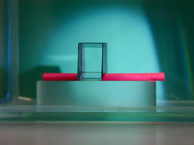 A piece of pink paper vanishes under a new invisibility cloak developed by MIT researchers