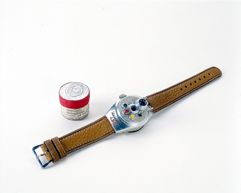 Steineck Watchcam