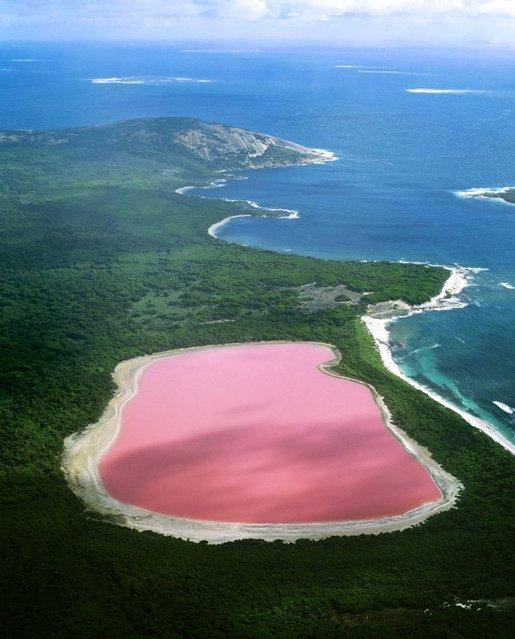 Hiller lake(pink lake), Western Australia