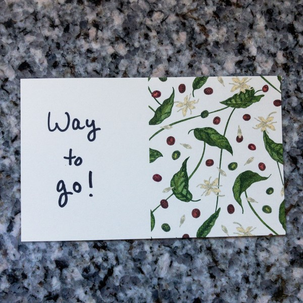 Wired Possum Coffee Gift Card Way to Go