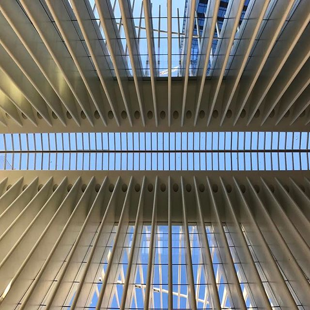 Another quick shot of WTC Oculus from the inside. #nyc #wtc #oculus #travel #traveling #socialenvy  #vacation #visiting #instatravel #instago #instagood #trip #holiday #photooftheday #fun #travelling #tourism #tourist #instapassport #instatraveling #mytravelgram #travelgram #travelingram #igtravel  #ForeverBermuda #GoToBermuda #Bernews #BermudaDreaming #Paradise #photography