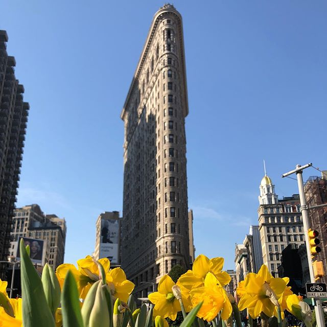 Good morning Flatiron building on a gorgeous April morning #nyc