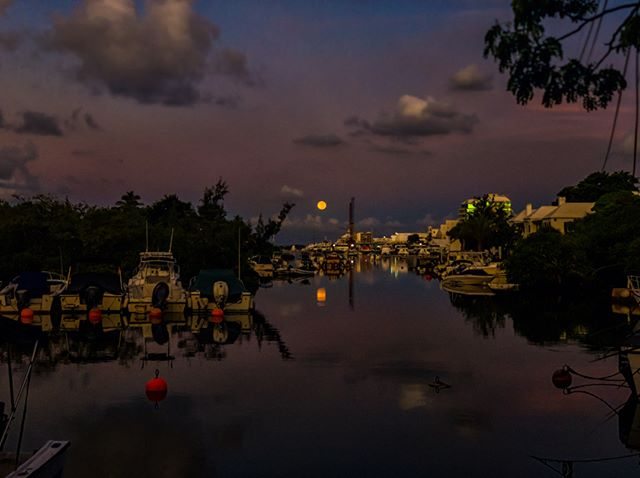 Beautiful moonset this morning. Happy Saturday!