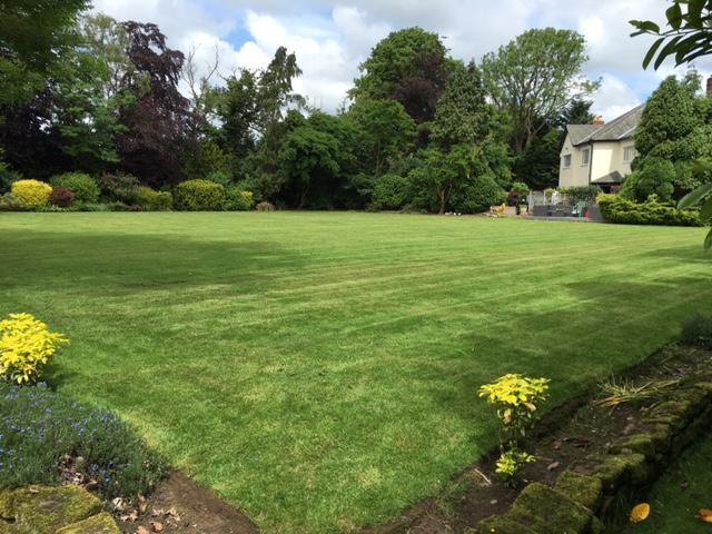 Wirral Garden 2
