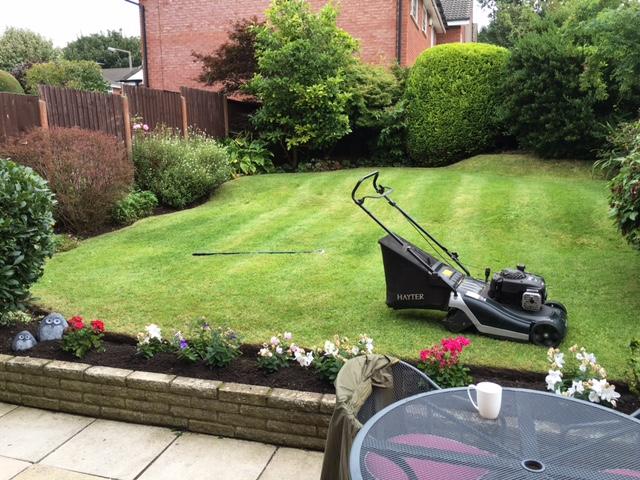 gardener 36