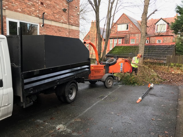 Wirral Tree Work