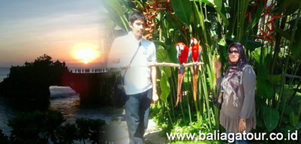 Bali Bird Park Dan Tanah Lot Tour