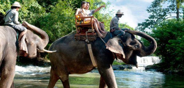 Wisata Naik Gajah di Bali bersama Bakas Levy Adventure