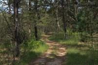 Leon Valley Campground3
