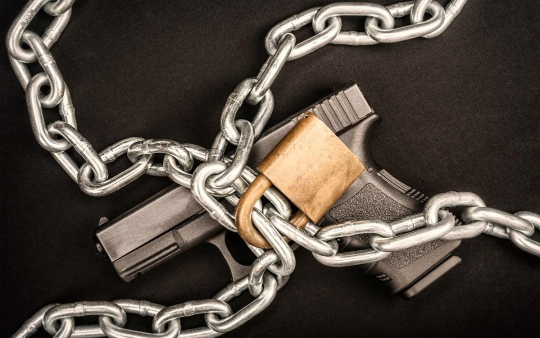 Senate Democrats Want Your Guns Locked Up 24/7!