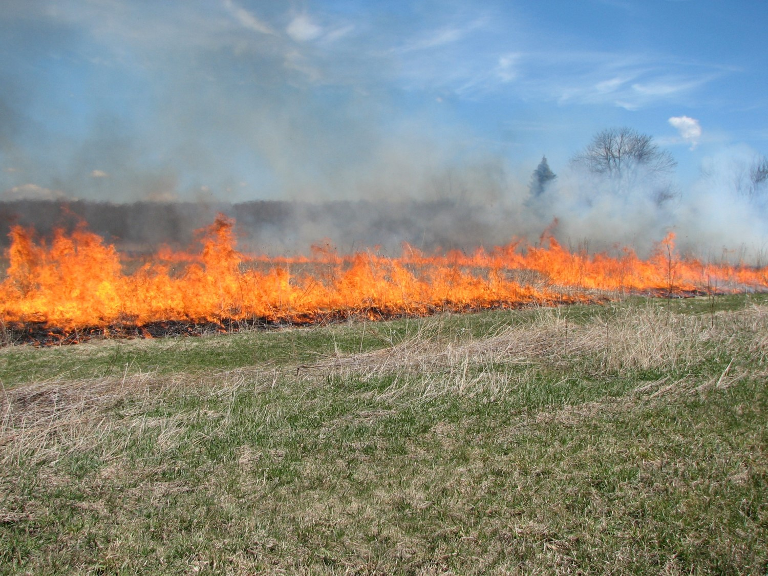 Controlled burning