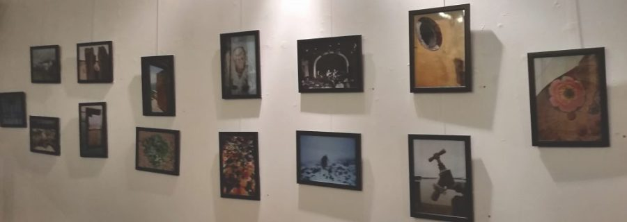 Exhibition by Pat Kingwell