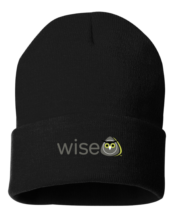 WISE Certification Beanie