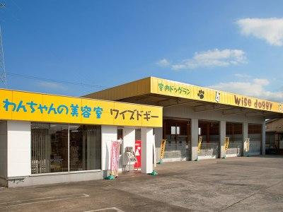 ワイズドギー 射水店(イータウン大島すぐ)
