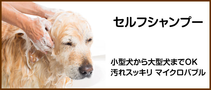 セルフシャンプー 小型犬から大型犬までご利用OK
