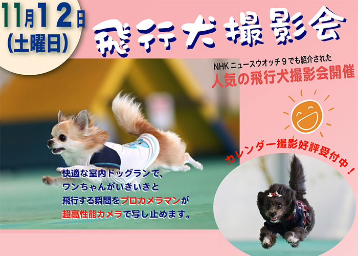 ZIPやNHKにも出演の飛行犬撮影会開催!11/12(土)@射水店
