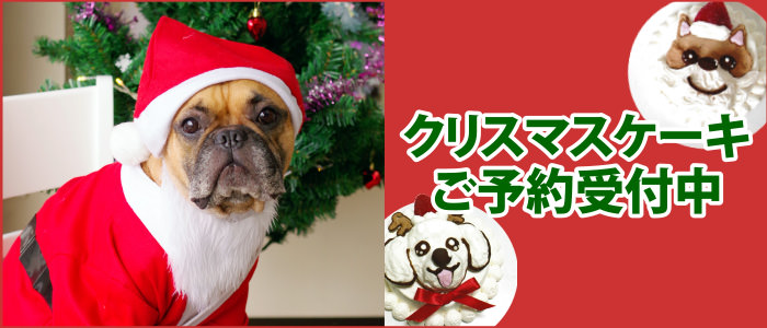 ワンちゃん用 無添加クリスマスケーキご予約受付中!