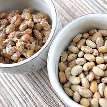 意外なワンコの大好物 フリーズドライ 納豆