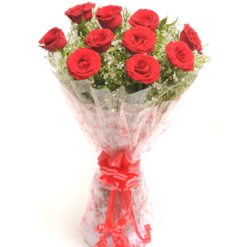 Vivid 10 Red Roses