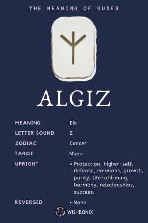 Rune Algiz Infographic