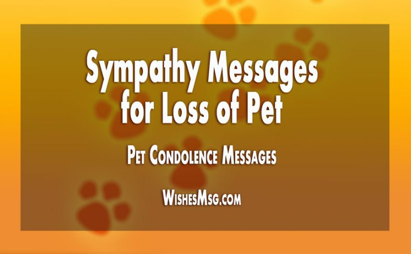 Sympathy Messages For Loss Of Pet Pet Condolence Messages