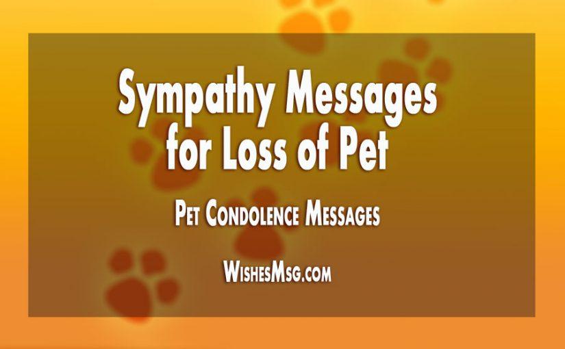 Sympathy Messages For Loss Of Pet Pet Condolence Messages
