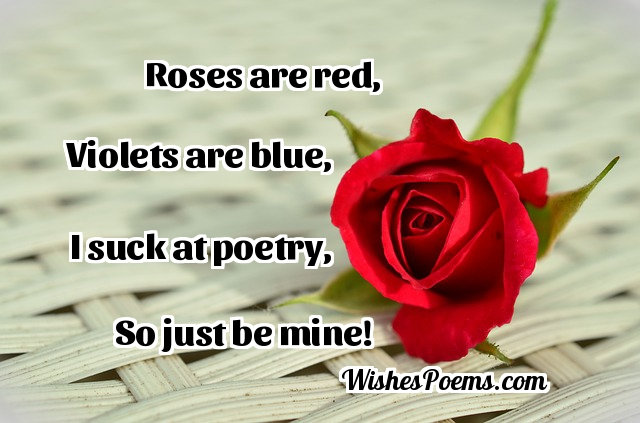 Funny love poems for her from him