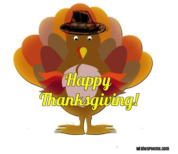 Image result for happy thanksgivings