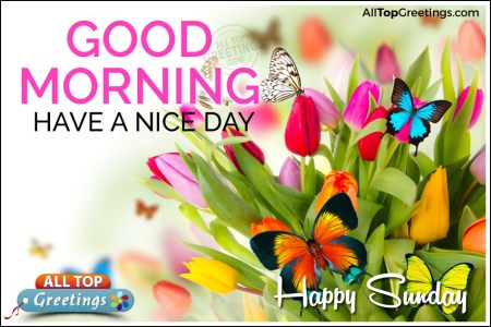 Good morning cool sunday hd images wallpaper for downloads sunday morning wishes pictures photos and images for facebook cool sunday morning wishes happy sunday good morning have a great day pictures photos and m4hsunfo