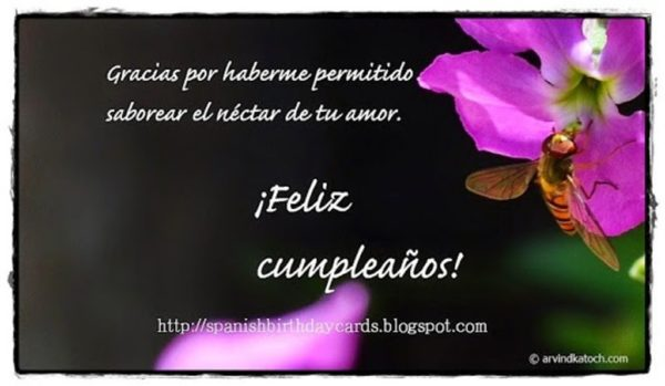 Birthday Wishes In Spanish Wishes Greetings Pictures