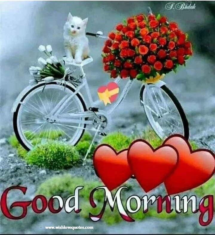 Good Morning Messages For Friends