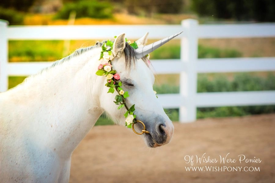 Silver Unicorn Horn for Horse Pony