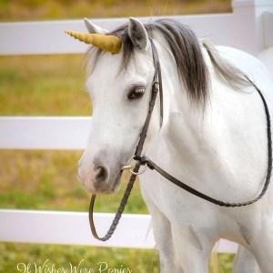 Dark Gold Unicorn Horn