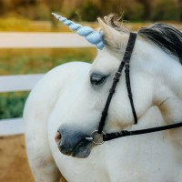 Blue Unicorn Horn for Horse