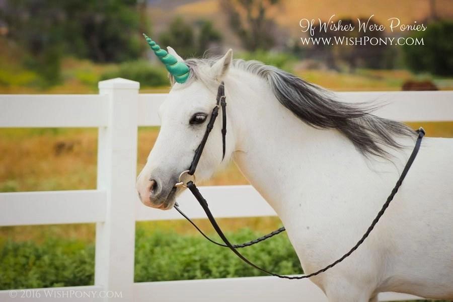 Jade Unicorn Horn