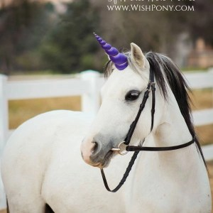 Realistic And Professional Unicorn Horns For Horses And Ponies