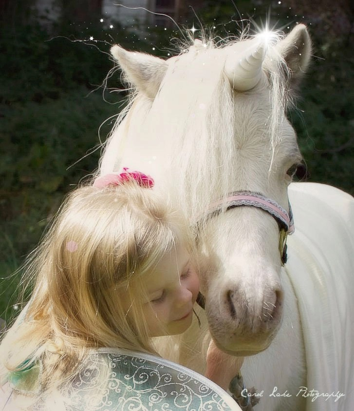 Magical Unicorn Photo