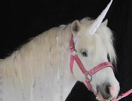 Classic Natural-Look Unicorn Horn™