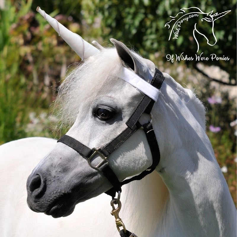 Wishpony Unicorn Browband