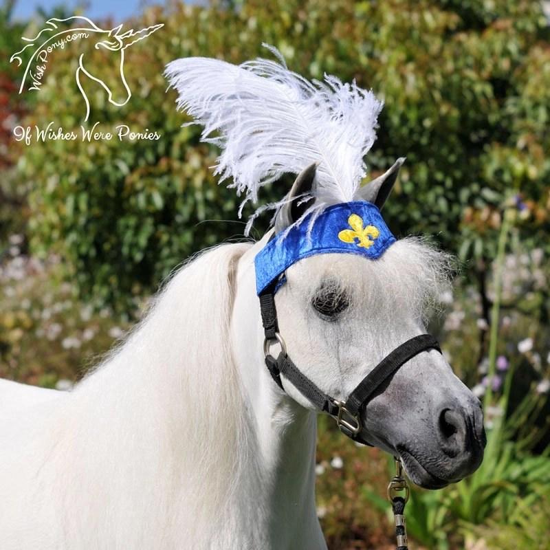 Horse Plume