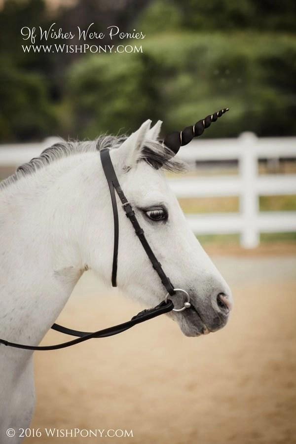 Wishpony Black & Platinum Unicorn Horn for Horse Pony