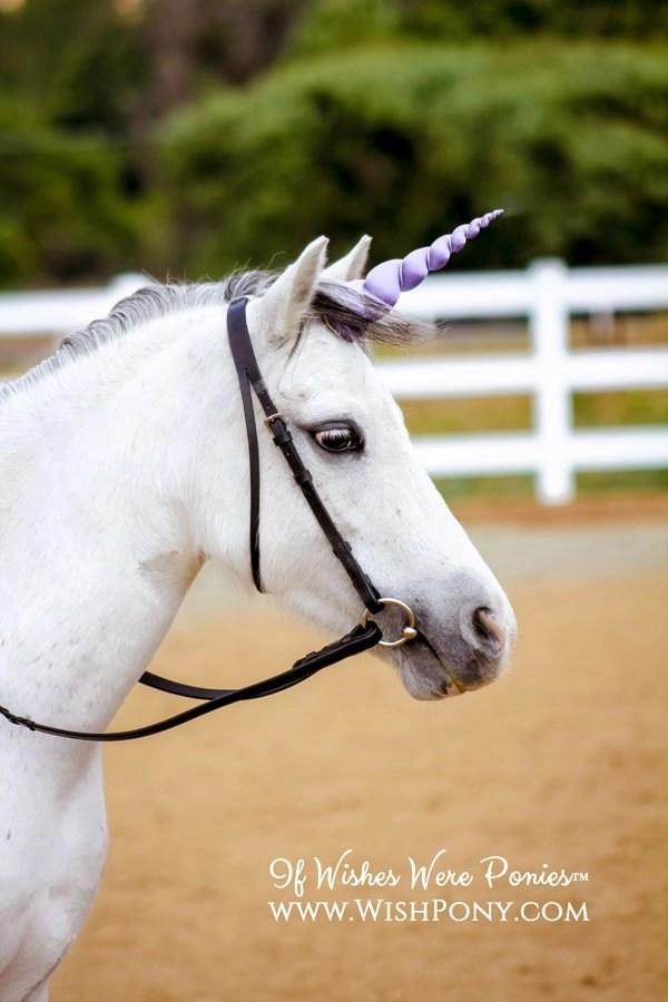 Lavender Unicorn Horn
