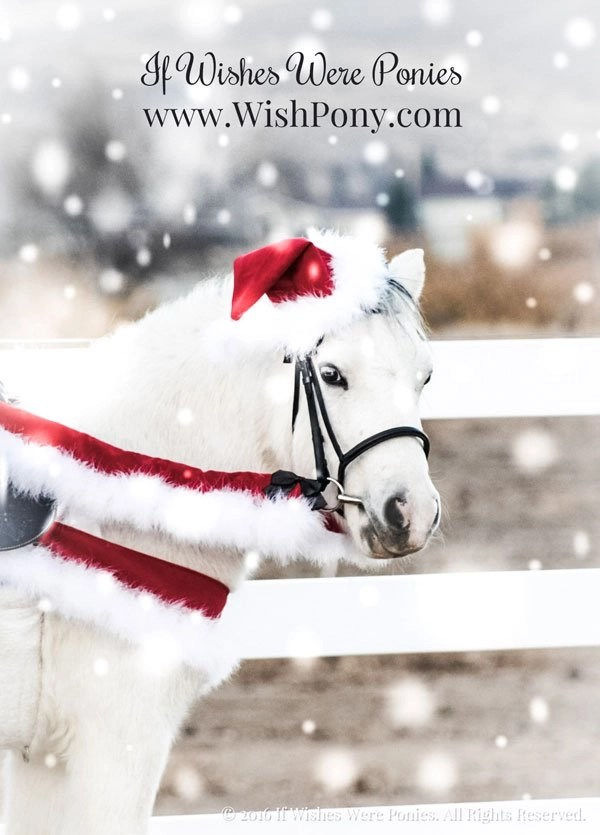 Horse Christmas Costume - Santa Or Elf Christmas Hat For Horses And Ponies Custom - If Wishes