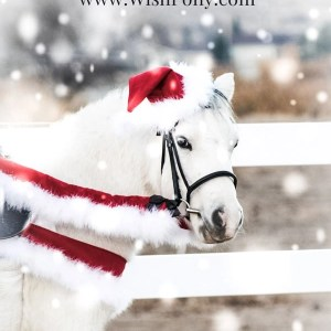 Horse Christmas Costume