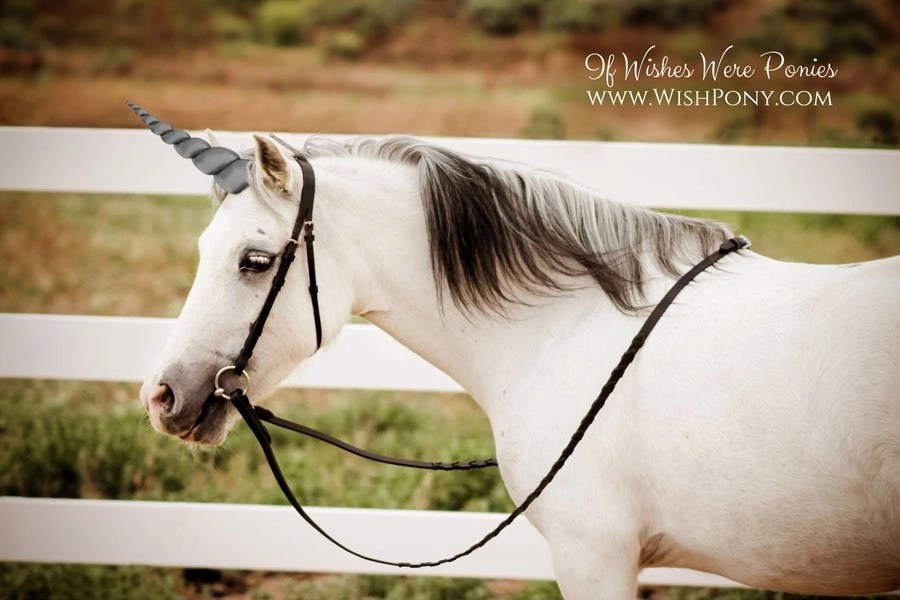 WishPony Dark Grey Unicorn Horn for Horses Ponies
